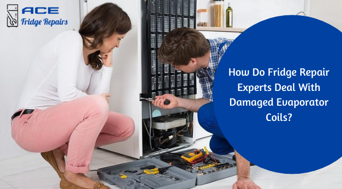 How Do Fridge Repair Experts Deal With Damaged Evaporator Coils?